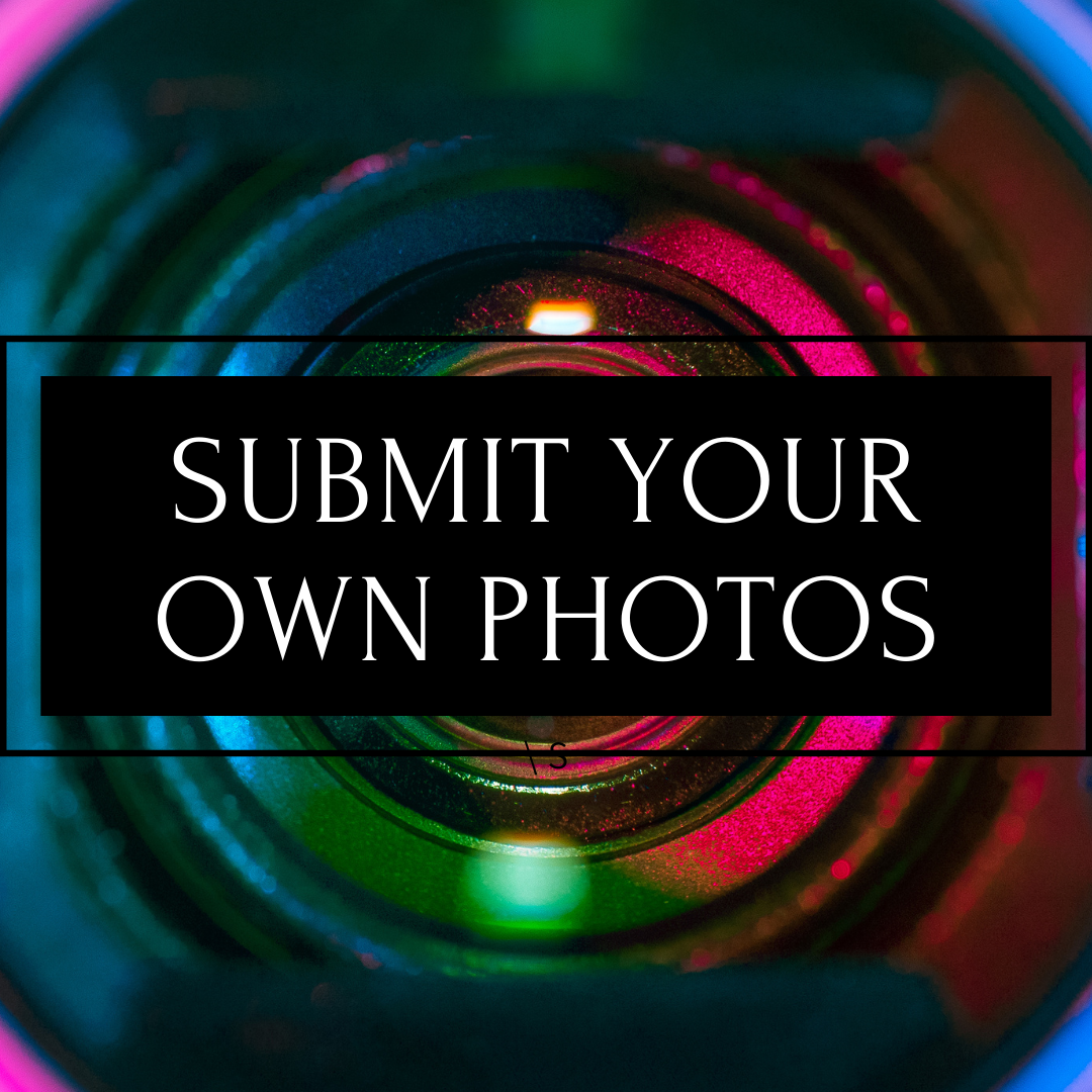 Submit your own