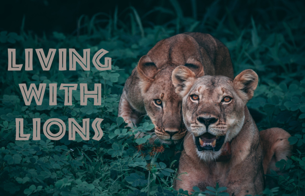 living.with.lions