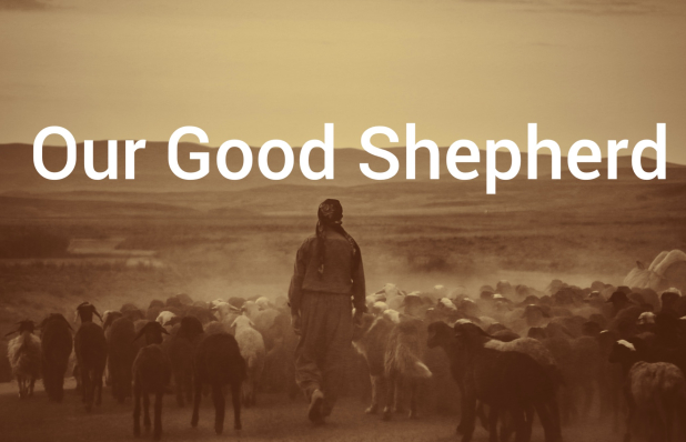 Our.Good.Shepherd