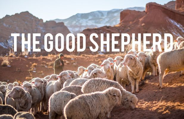 the.good.shepherd