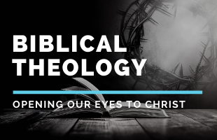 Biblical Theology Event image