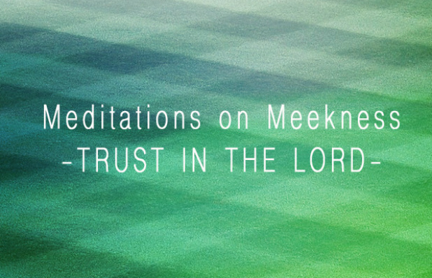 Blog - Meekness: Trust in the Lord