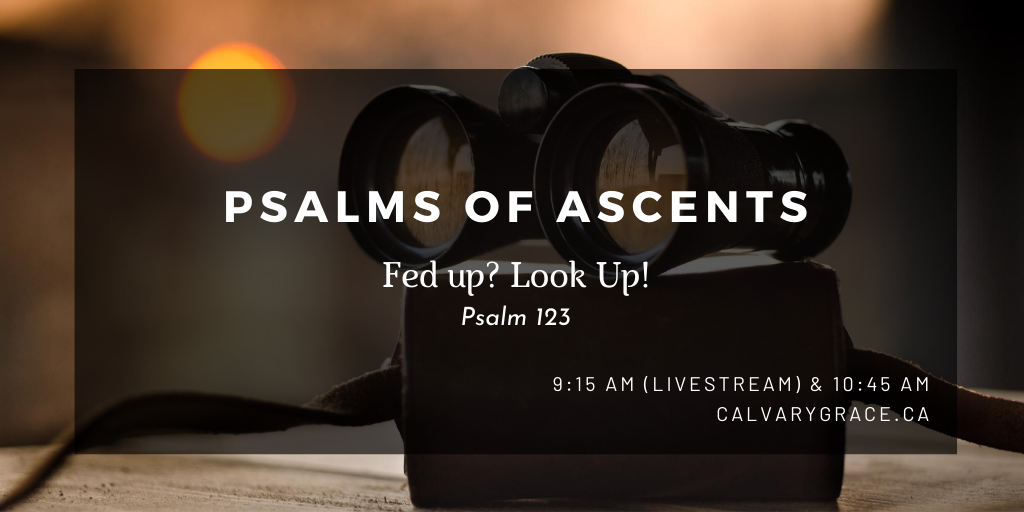 Psalms of ascent (7)