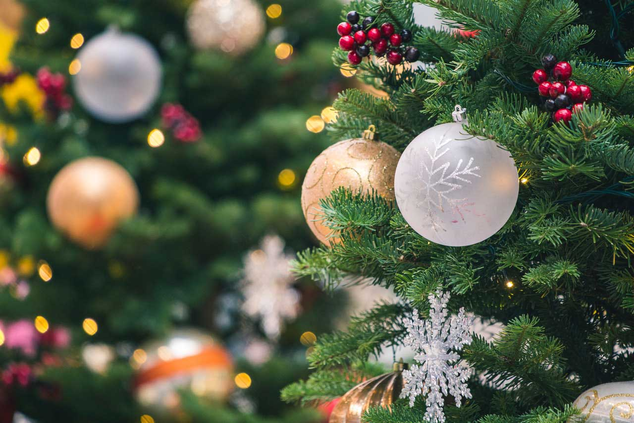 tilt-shift-photography-of-green-christmas-tree-with-baubles-1723679-cropped image