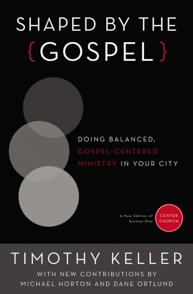 Shaped By the Gospel Image
