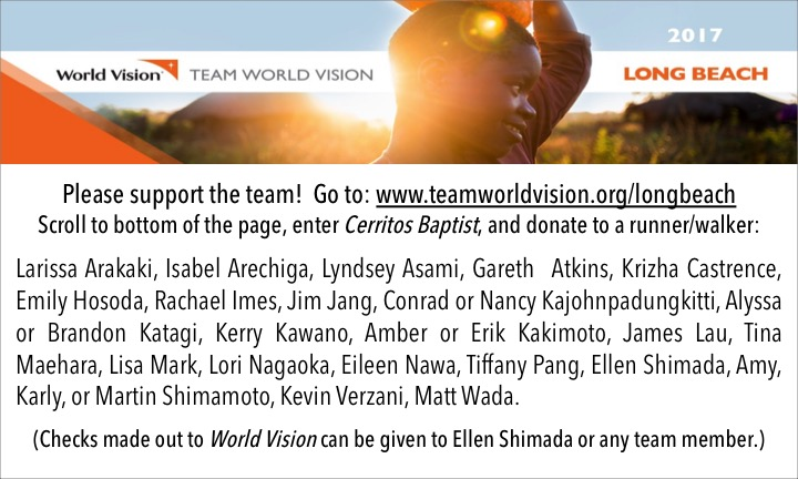 2017 Donate to TeamWV