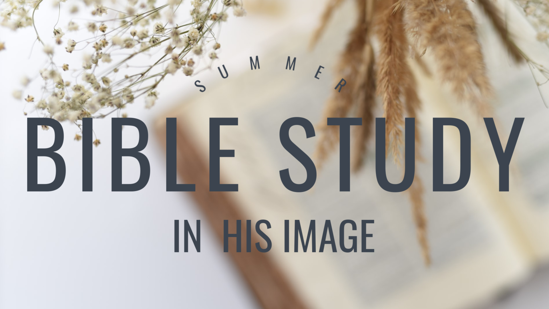 Summer Study In His Image 1920 x 1080  image