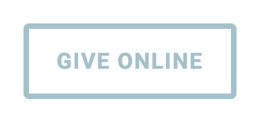 Button_give-online