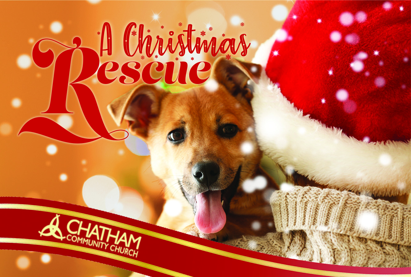 Christmas Mailer 2019 CCC Front cmyk