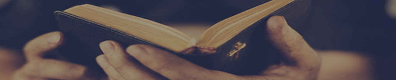 mens bible header