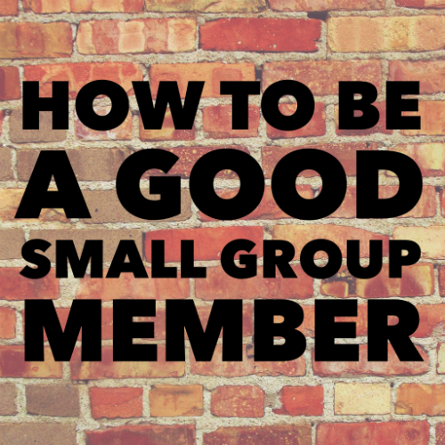 A Good Small Group Member