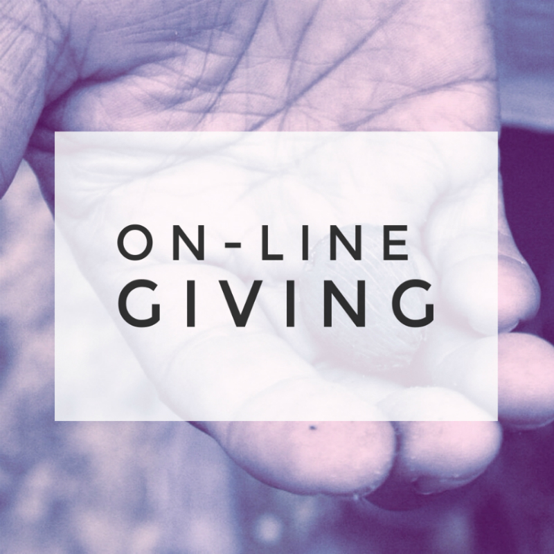 online giving 800 by 800