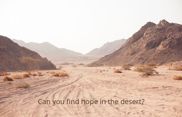 Can you find hope in the desert_