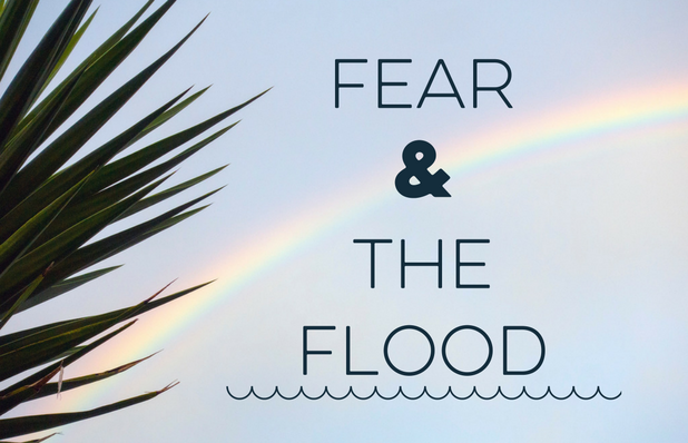 Fear &The Flood