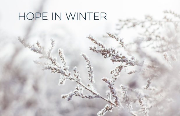 Hope in Winter