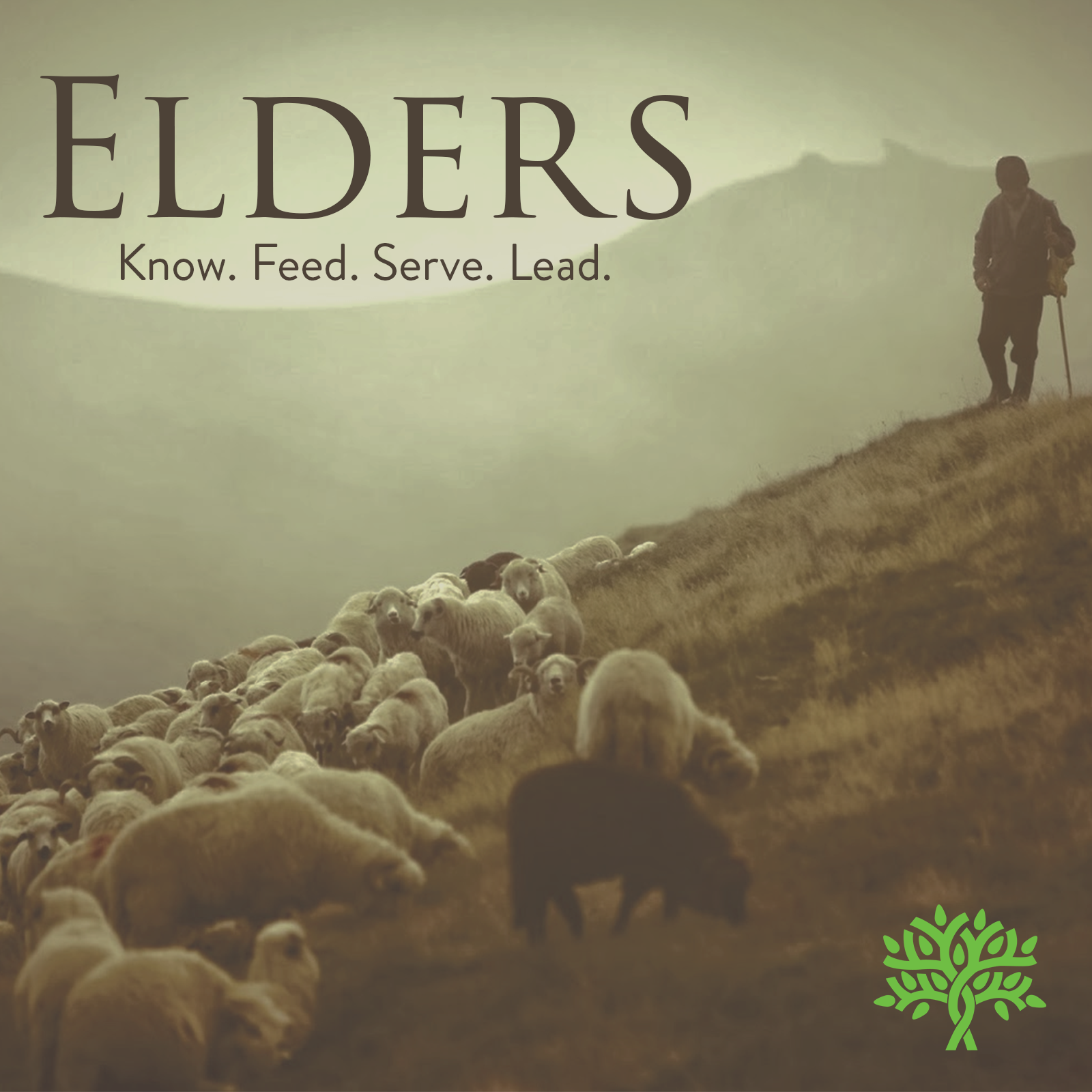 Elders image