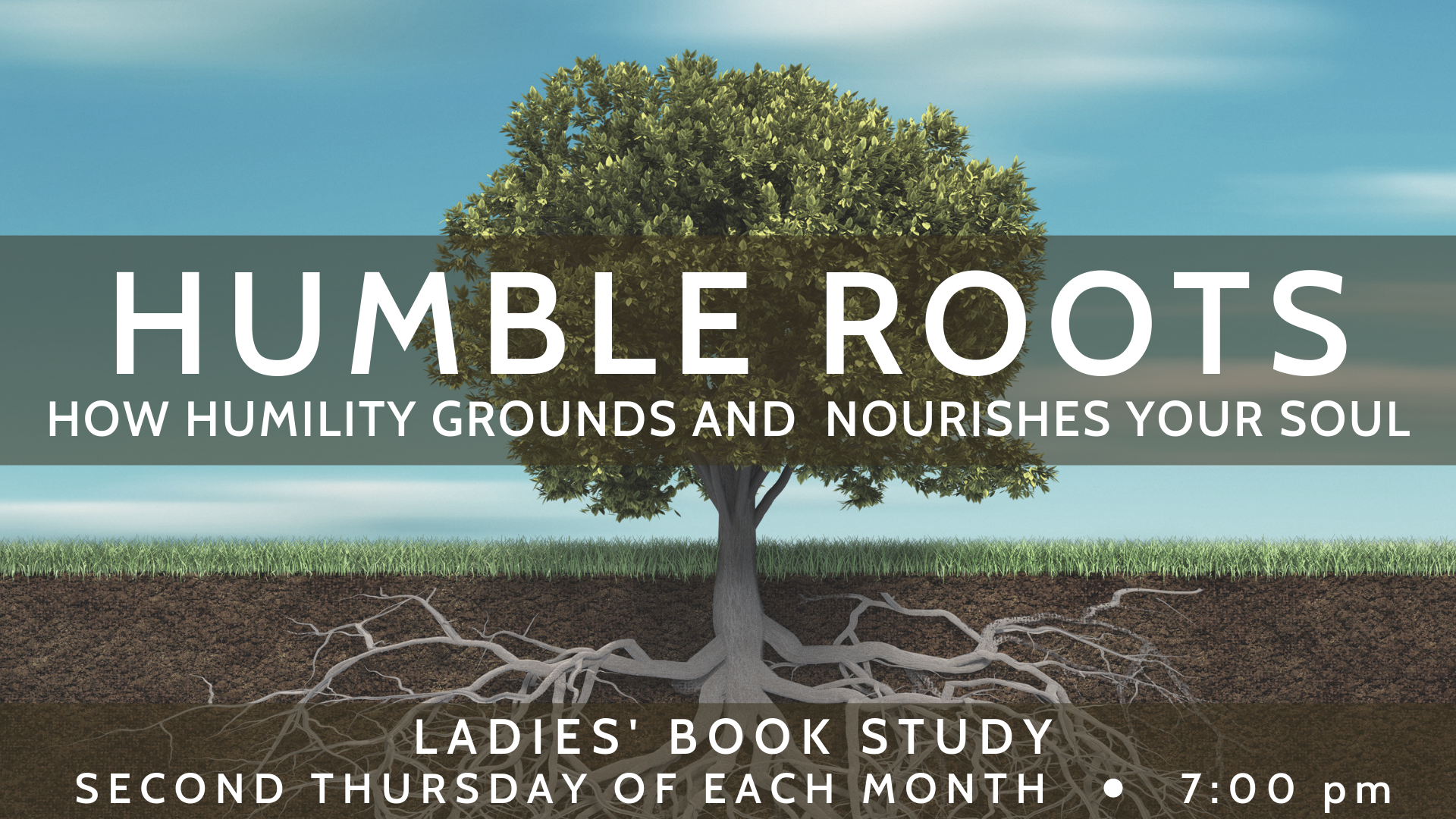 LBS - Humble Roots image
