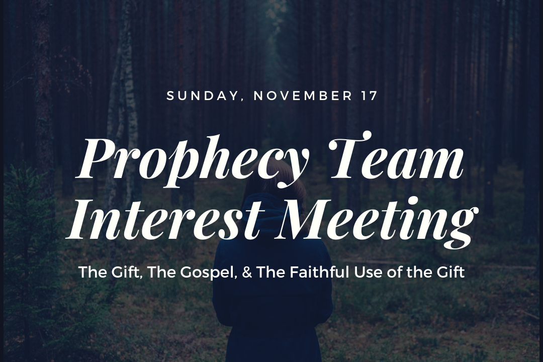 Prophecy Team Web image