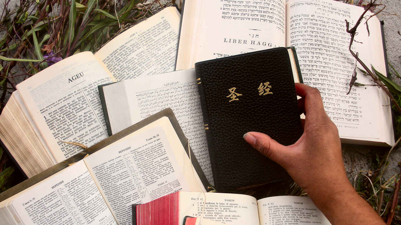 Bibles, many languages