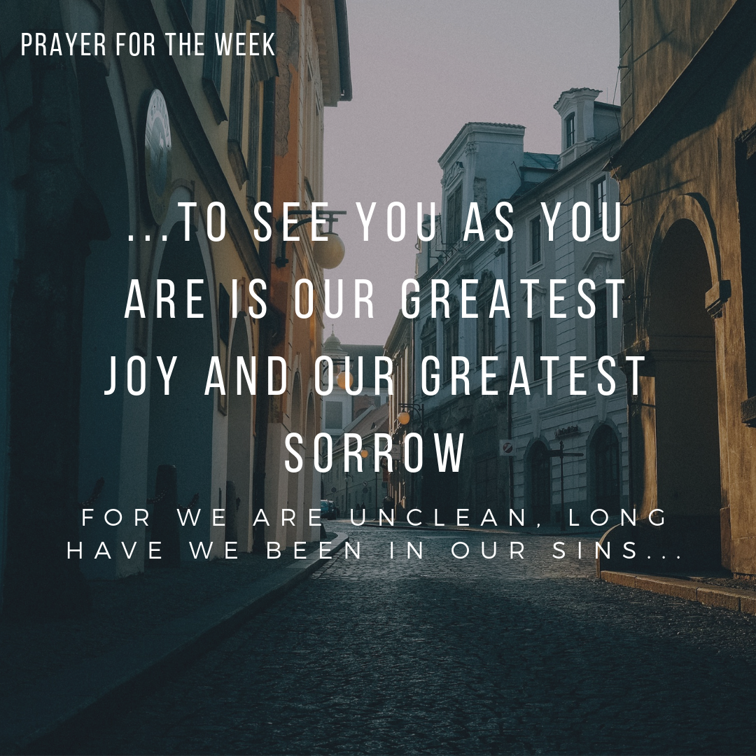 to see you as you are is our greatest joy and our greatest sorrow