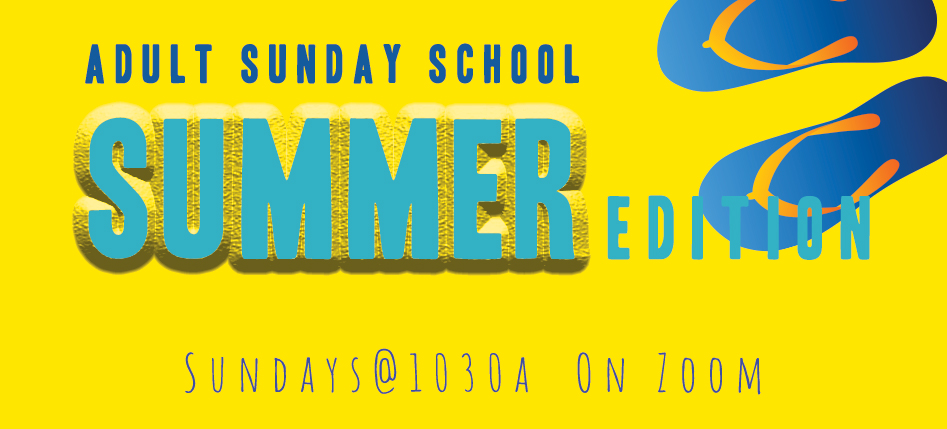 Adult SS Summer Zoom Banner