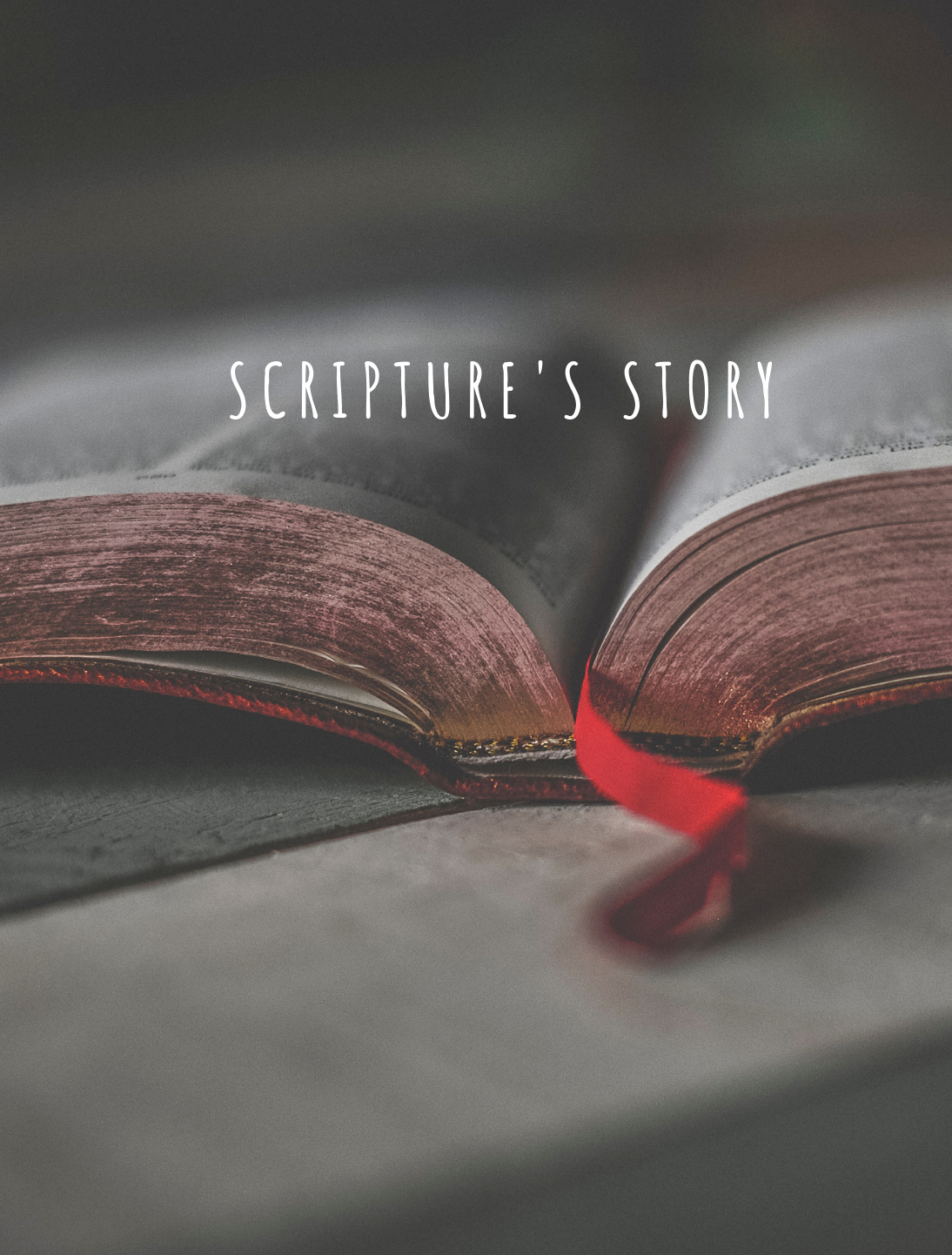 Scripture's Story2