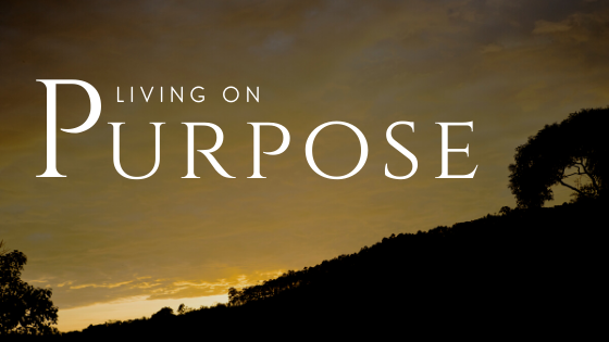 Purposeblog