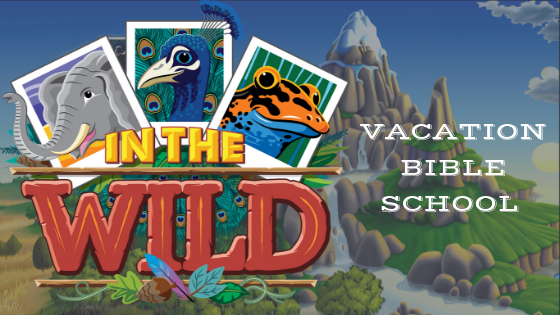vbs2019event image