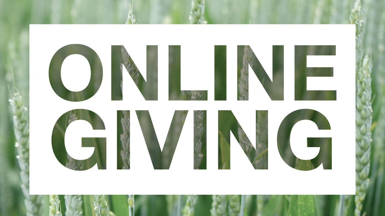 Online Giving Small