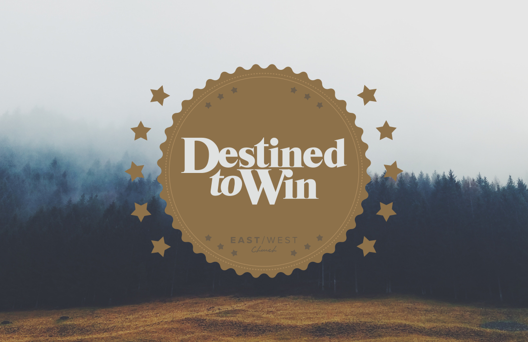 ev_destined_to_win image