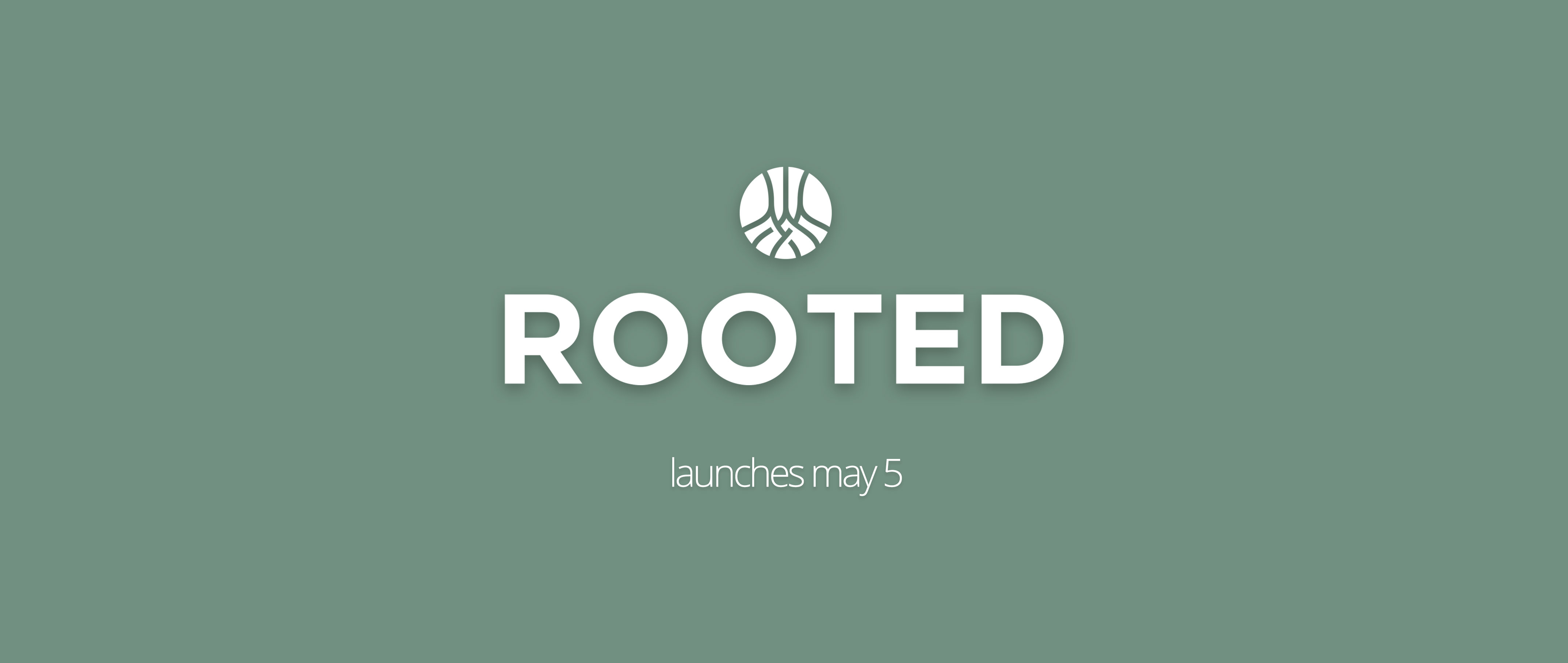 rooted-webslide image