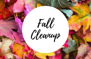 Fall Cleanup2 image