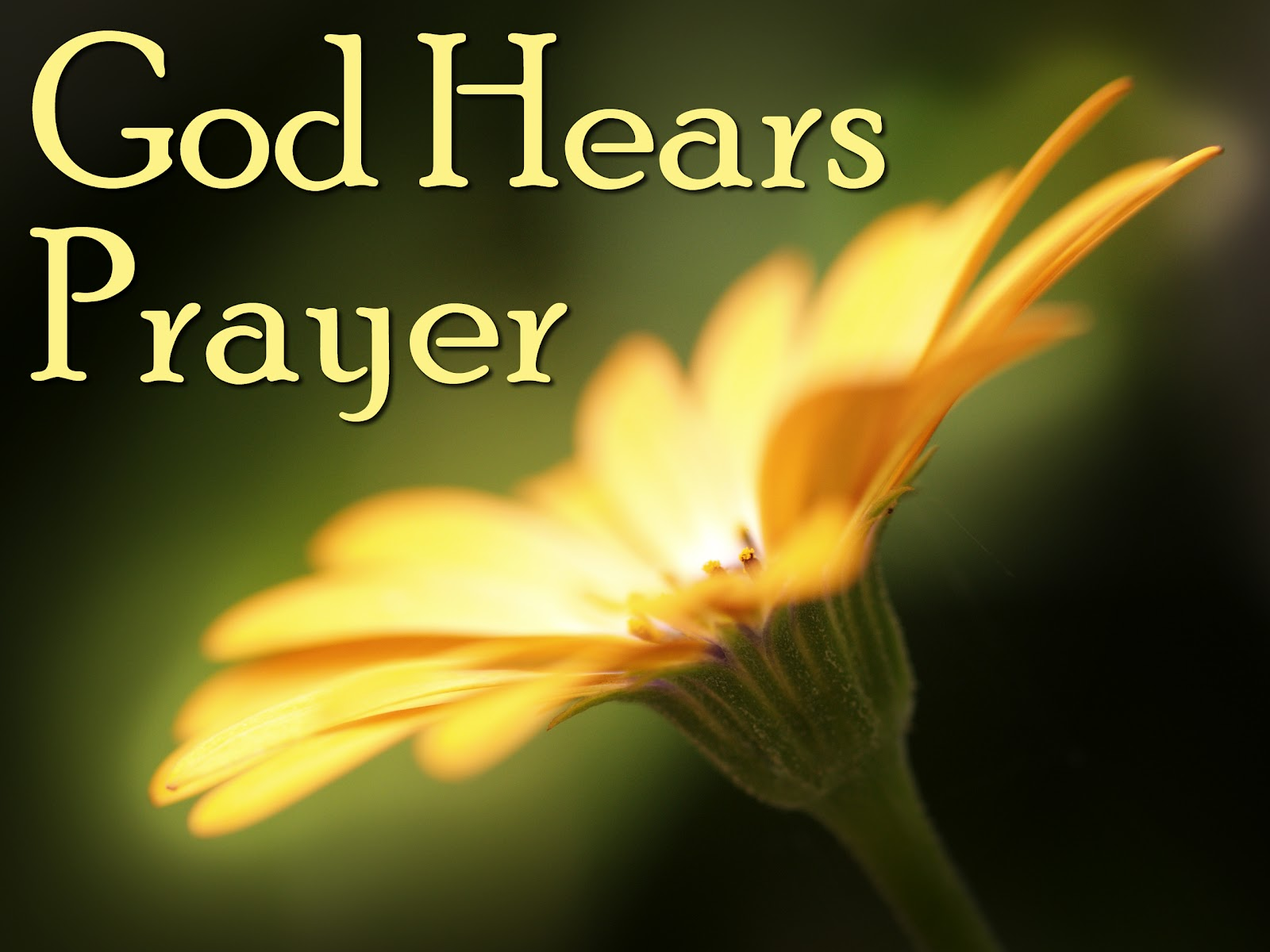 21 days of prayer image