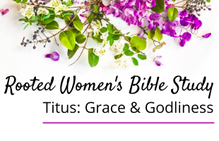 Titus Bible Study Quicklink (2)