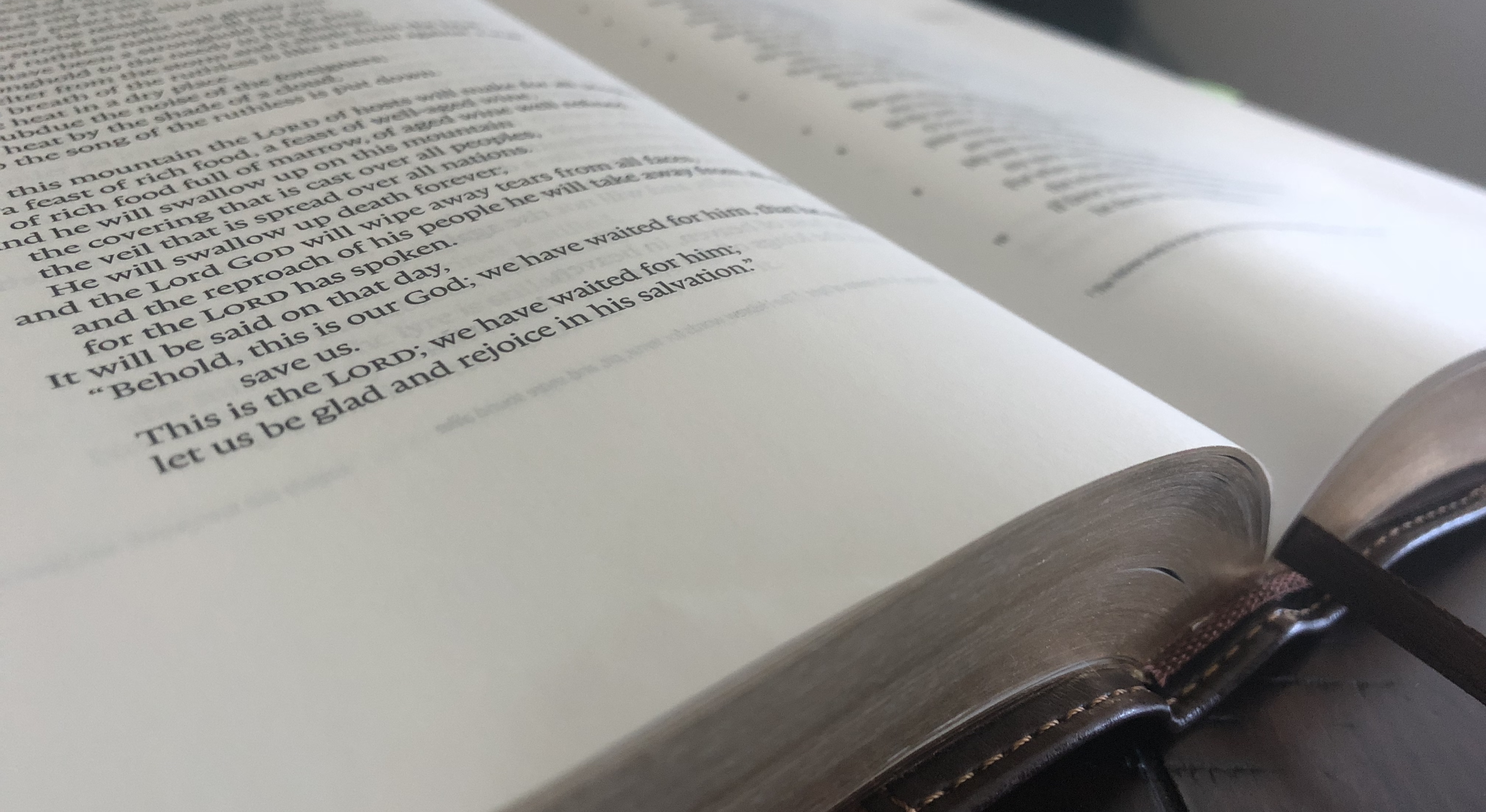Just Bible 5 image