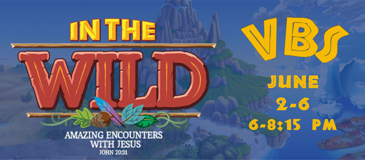 VBS 2019 page info