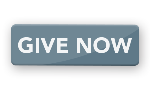 Give Now 500x300 Web2019