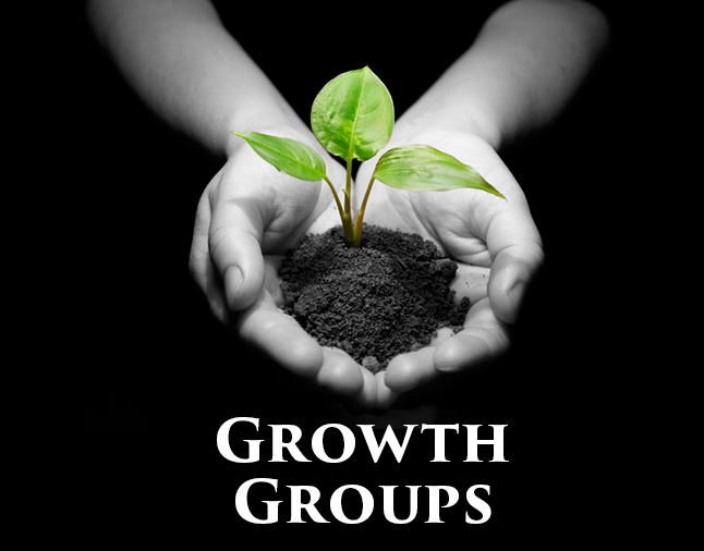 Large Banner Growth Groups image