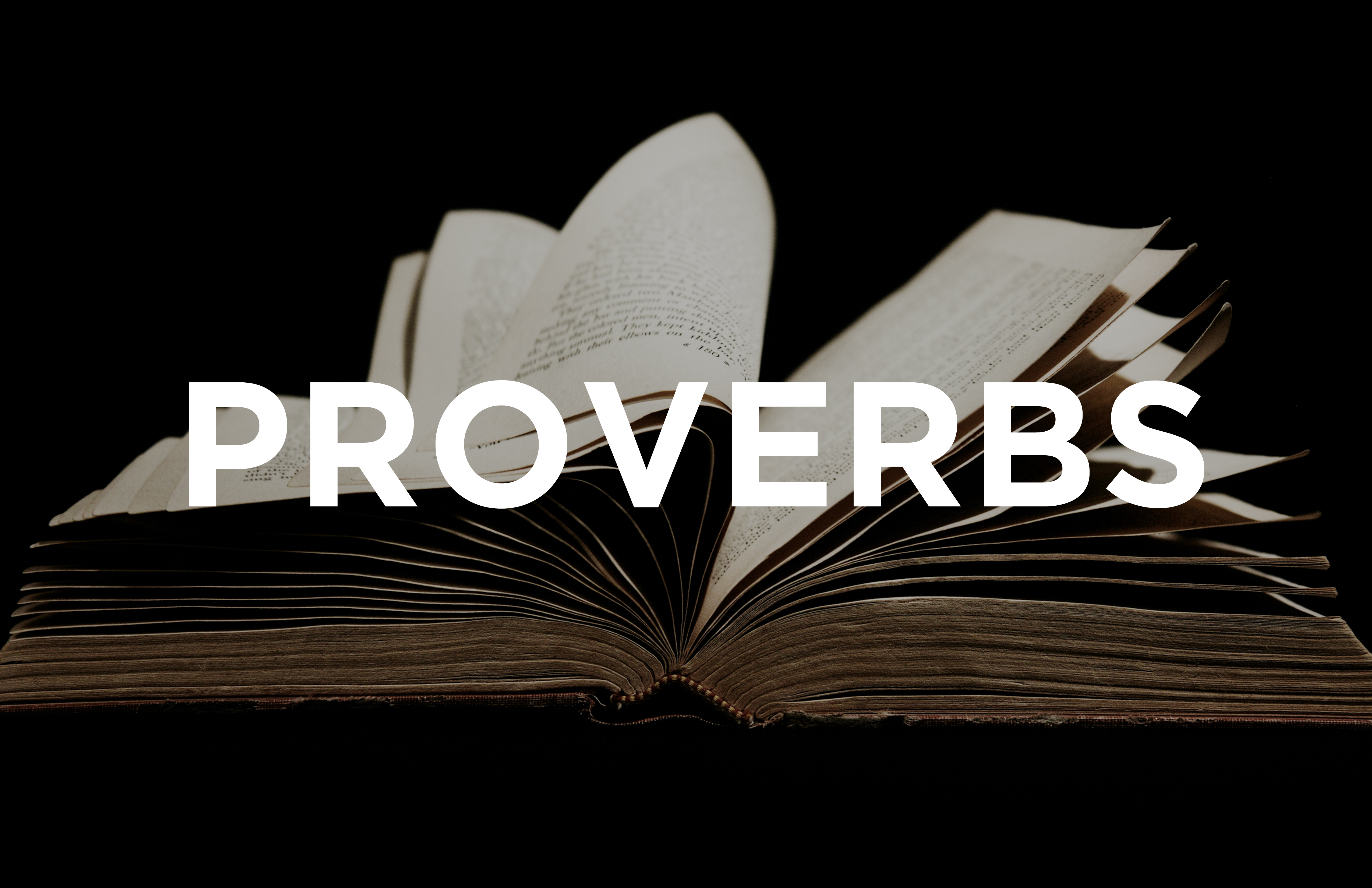 Proverbs banner