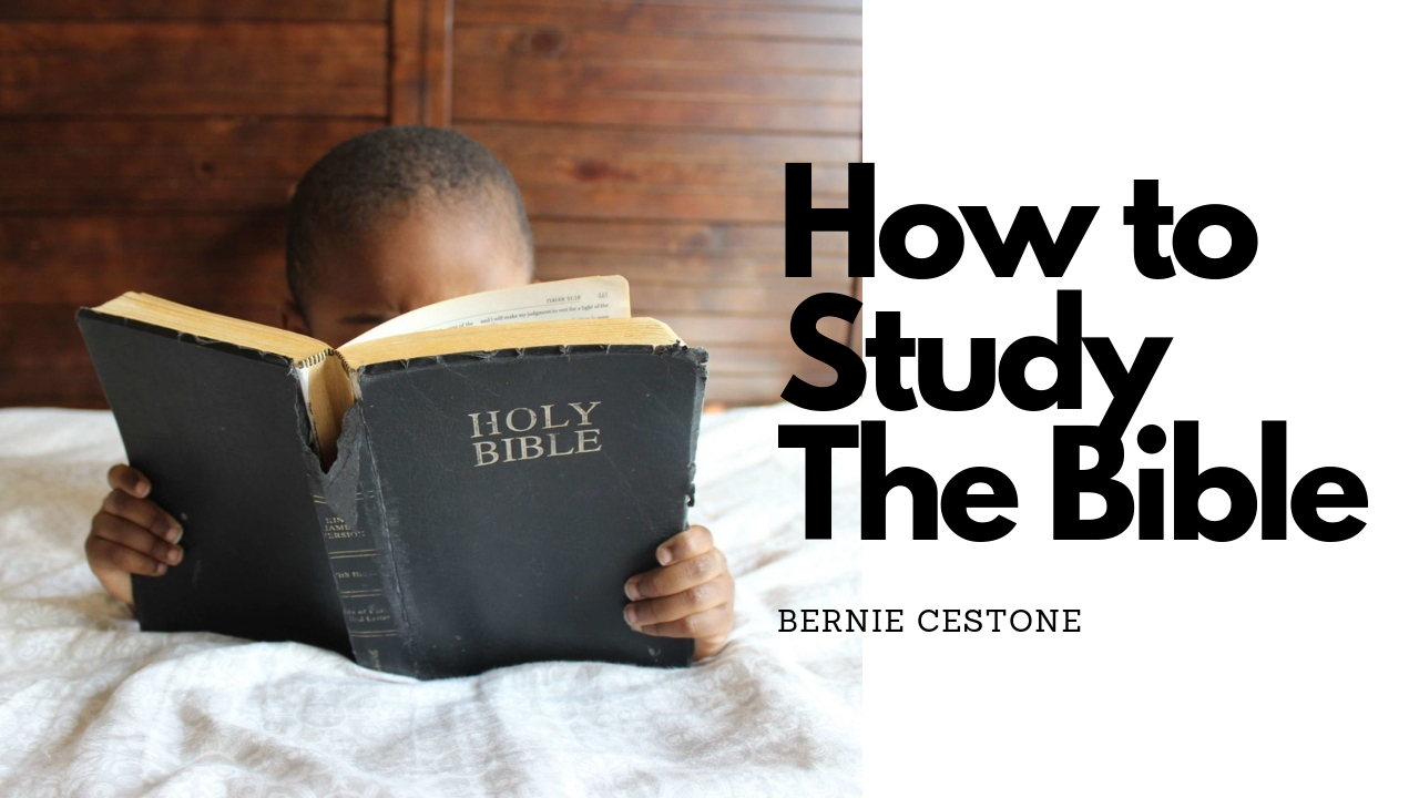 How to Study the Bible banner