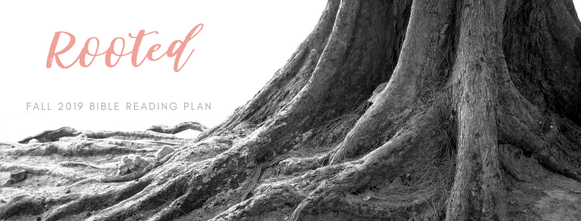 Rooted Bible Reading PLan Fall
