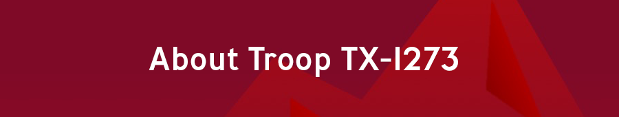 TLUSA About Troop TX-1273 button 900x170