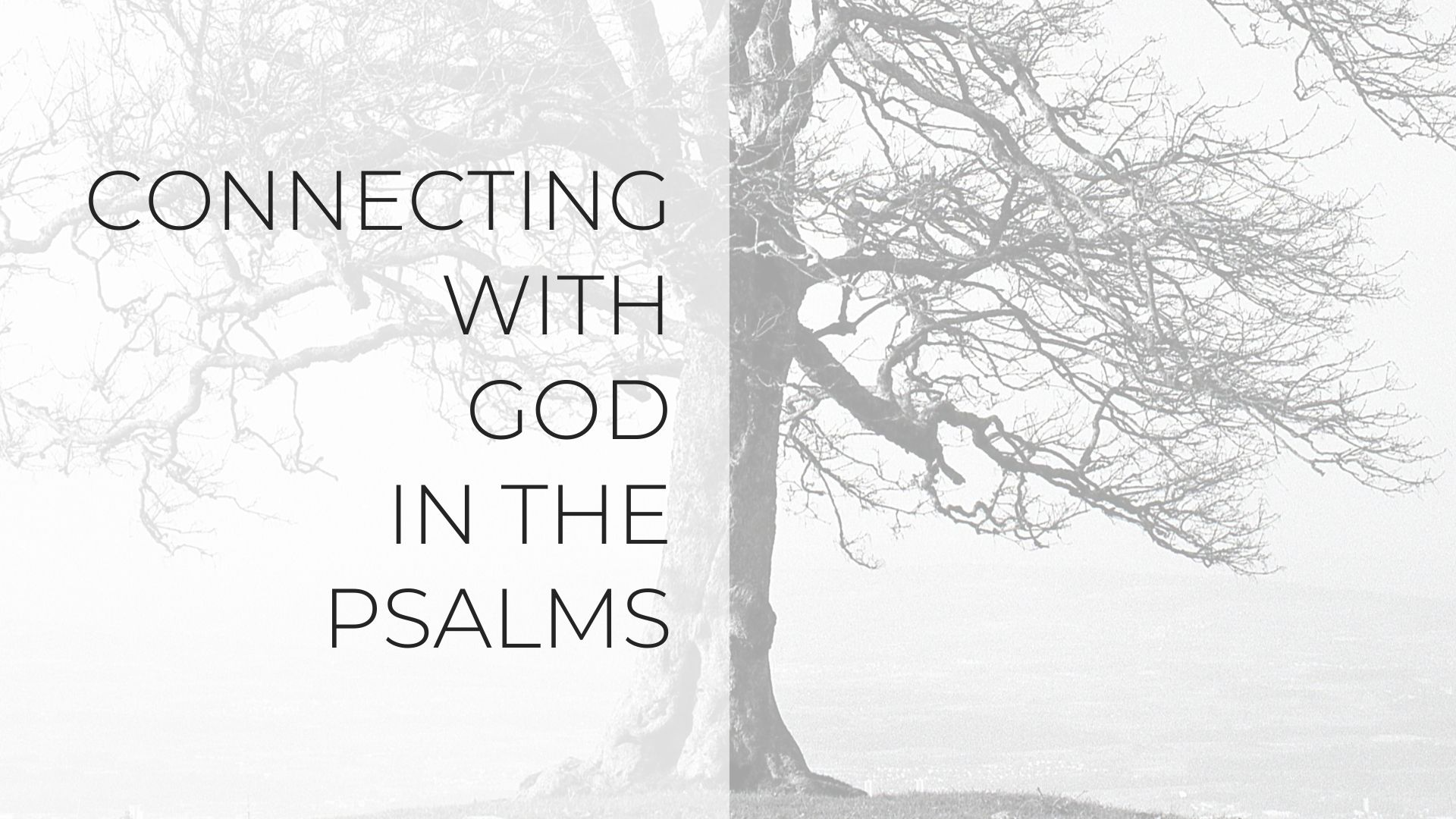 Connecting with God in the Psalms