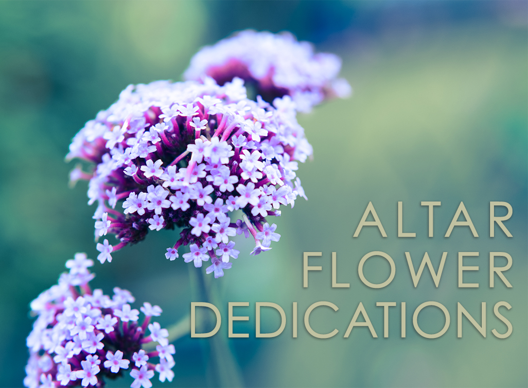 AltarFlowerDedications copy