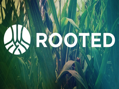 Rooted Image with Logo