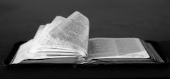 bible open small image