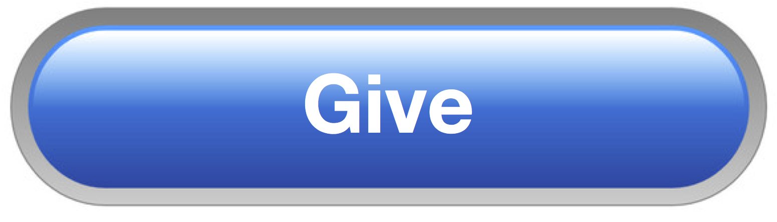 04 -Give button