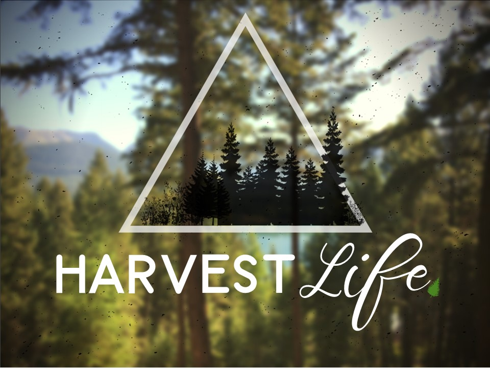 Harvest Life event image