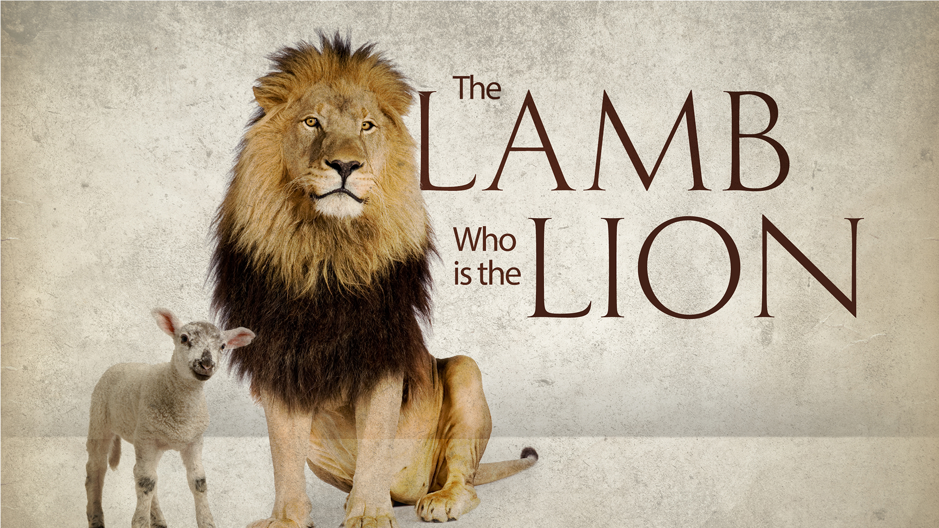 The Lion who is the lamb  Media 1