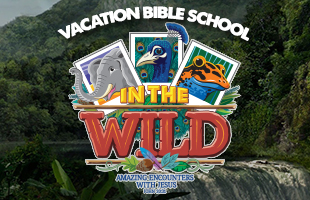 vbs 2019 (feat) image